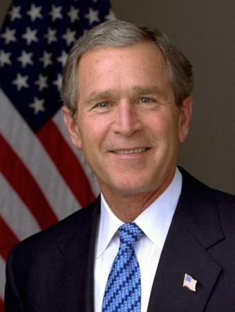 bush.jpeg
